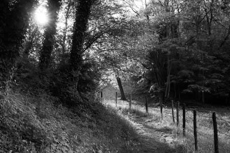 Spring Lights · Semur-en-Auxois · Bourgogne · France · 2011