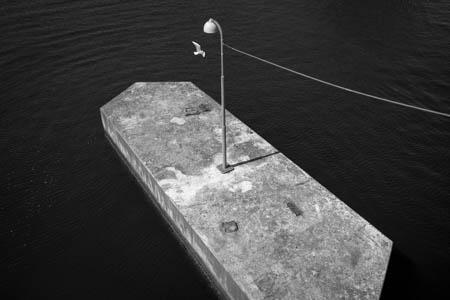 Bird & Light · Langebro Bridge · Copenhagen · 2013