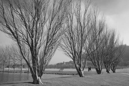 Jardin des Personnalités · Honfleur · Normandie · 2014