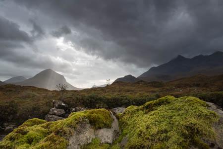 The Tree Amongst the Cuillin Hills · Sligachan · Isle of Skye · Scotland · 2014