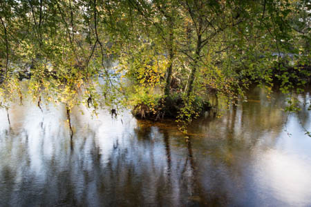 Impression, Autumn · Inverness · Scotland · 2014