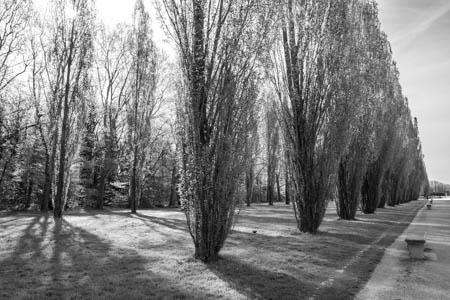 Grand Canal · Parc de Sceaux · 2015