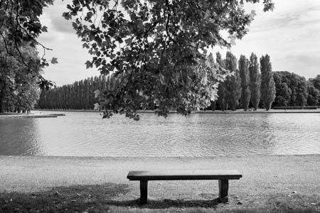 A Tree on a Bench · Parc de Sceaux · 2015