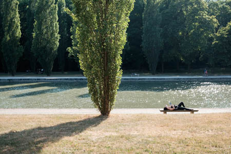 In the Summer · Parc de Sceaux · 2015