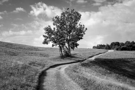 Through the Hills · Škofja Loka · Slovenia · 2015