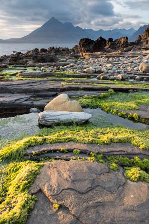 Rocks & Algae · Loch Scavaig · Isle of Skye · Scotland · 2015