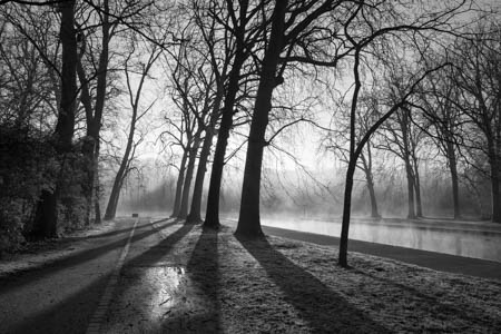 Through the Morning Mist · Parc de Sceaux · France · 2016
