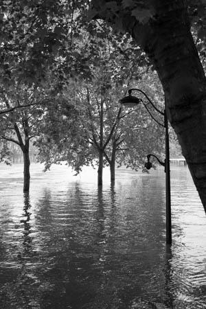 Waterside City · Quais de Seine · Paris · 2016