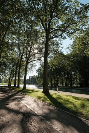 Walking Under the Sun · Parc de Sceaux · France · 2016
