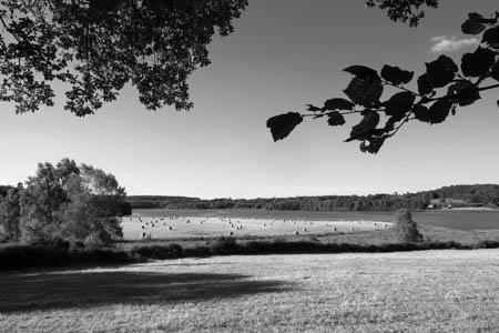Fields · Saint-Agnan · Morvan · 2016