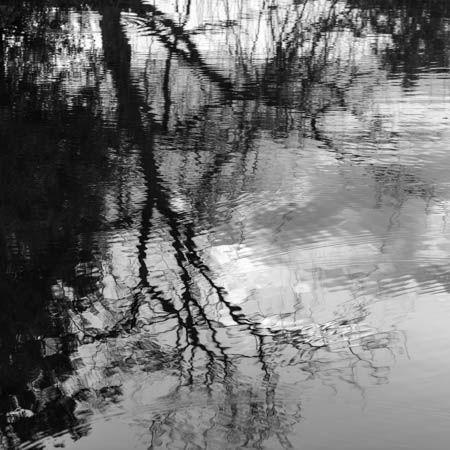 Surfaces · Marais Poitevin · France · Juin 2021