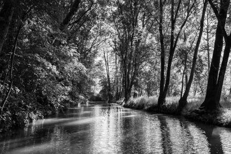 Après les lignes ? · Marais Poitevin · France · Juin 2021